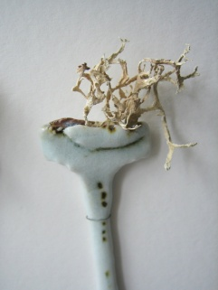 Elaine Bolt ceramics