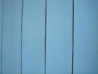 Blue line 1