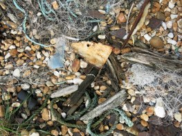 Dungeness, flotsam and objects