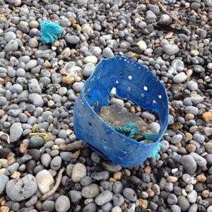beach find