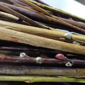 Elaine Bolt Ceramics, willow colours