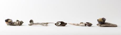 Elaine Bolt Ceramics - Woodland Utensils - image by Yeshen Venema Photography